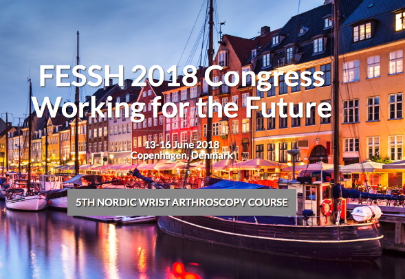 FESSH congress 2018 Copenhagen